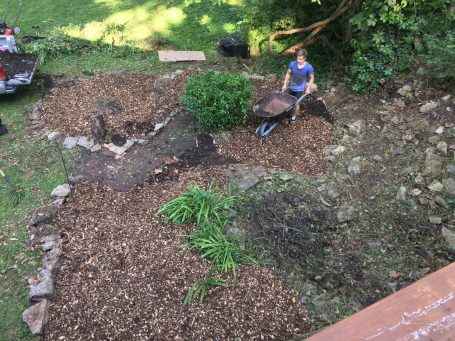 Wood chips for Garden Beds