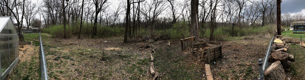 midwest food forest